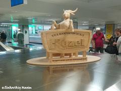 Зал прилета и получение багажа в аэропорту имени Вацлава Гавела